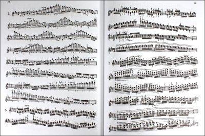 画像2: バイオリン音階教本◆カール フレッシュ◆音高・音大生・プロご用達♪