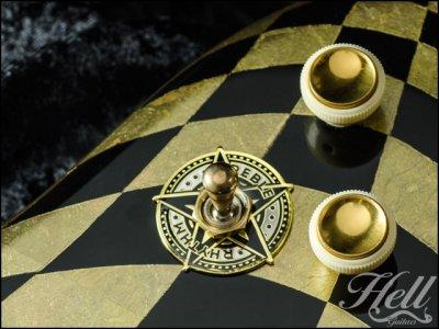 画像2: トグルスイッチプレート Gibson(ギブソン)/Epiphone(エピフォン)など対応◆STAR ゴールド