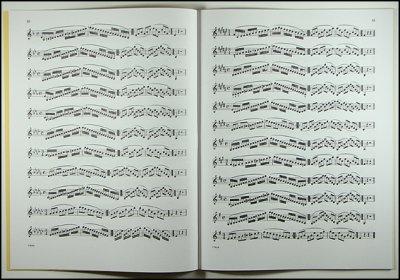 画像1: バイオリン音階教本◆Hrimaly(フリマリー)◆初〜中級用